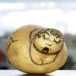 in 10 stappen lekkere aardappels telen